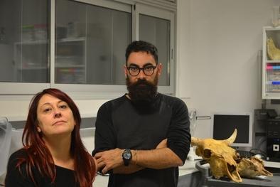 Palmira Saladié y Antonio Rodríguez-Hidalgo, dos de los autores principales del artículo, en el IPHES, junto a un cráneo de bisonte