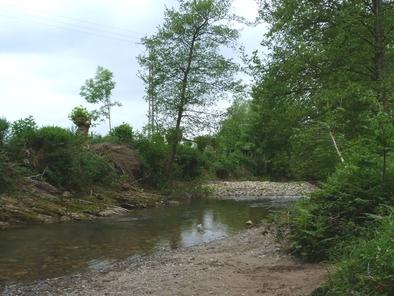 Canal actual del río Oiartzun.