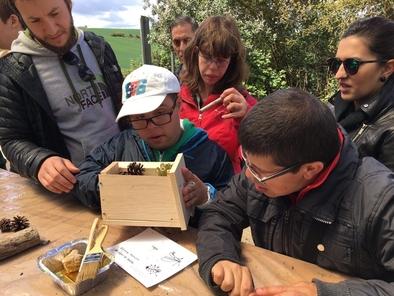 Los estudiantes participaron en la realización y colocación de hoteles para insectos a lo largo del sendero botánico