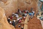 Los homínidos de Atapuerca cazaban en grupo