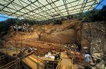 Los Yacimientos - Gran Dolina TD10