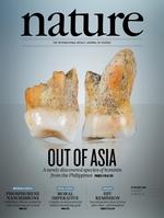 Hallan una nueva especie de homínido en Filipinas