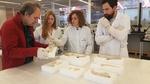 El CENIEH restaura siete fragmentos de astas de ciervo de unos 6.000 años